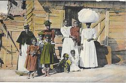 CPA-USA-1905-FAMILLE Et Leur MAISON Du SUNNY SOUTH-TBE - Etats-Unis