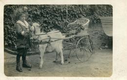 Enfant  Et Sa Voiturette Tirée Par Une Chèvre (carte Photo ) (attelage De Chévre) - Games & Toys
