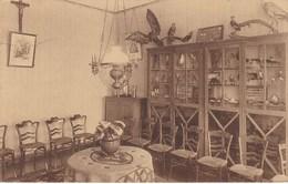 NECHIN - ESTAIMPUIS. Pensionnat De La Sainte-Union Des Sacrés-Coeurs (Musée) - Estaimpuis