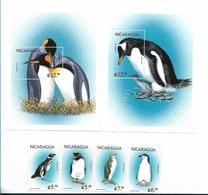 NICARAGUA 1999, MARINE BIRDS, PENGUINS, FAUNA, 2 MS + 2 SS + 4 VALUES SC 2270-76 MICHEL 3955-64 + NOT CATALOG. - Nicaragua