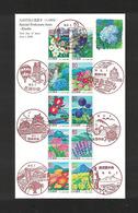 Japan FDC 2006.06.01 Flowers And Scenery In Kyusyu(Fukuoka, Saga, Nagasaki, Oita, Kumamoto, Miyazaki, Kagoshima) - FDC