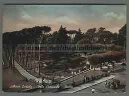 V6914 ALBANO LAZIALE Roma VILLA COMUNALE PINETA ACQUERELLATA VG (m) - Altre Città