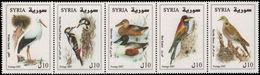 Syria 2007 Birds Unmounted Mint. - Syria