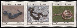Syria 2008 Snakes Unmounted Mint. - Syria