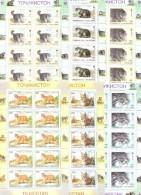 1996. Tajikistan,  WWF, Wild Cats, 6 Sheetlets Of 10v, Mint/* - Tadschikistan