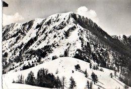 La Colmiane Ses Beaux Champs De Ski 1966  CPM Ou CPSM - Autres Communes
