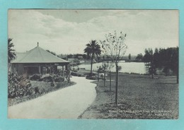 Old Post Card Of Torrens Lake,North Adelaide,South Australia,R68. - Adelaide