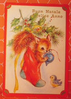 Auguri Buon Natale Anno Nuovo Calza Animali Cartolina Viaggiata - Christmas
