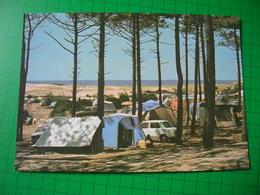 Cpsm 10x15 V Moliets Plage Landes Le Camping St Saint Martin Tentes Voitures Bon Etat - Francia