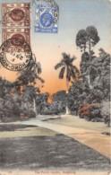 Chine - Hong Kong / Belle Oblitération - 70 - The Public Garden - China (Hong Kong)