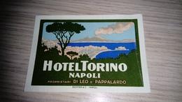 E1-Hotel TORINO NAPOLI ITALY ITALIA,old HOTEL LUGGAGE LABEL ETIQUETTE ETICHETTA BAGAGE - Hotel Labels