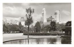 POSTAL    SAO PAULO  -BRASIL  - PARQUE DOM PEDRO II  (FOTO POSTAL COLOMBO) - São Paulo