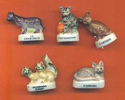Lot De 5 Feves Porcelaine Chats Divers - Animals