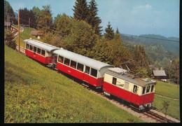 Chemin De Fer Electrique Veveysan ( CEV ) Troncon A Cremaillere Blonay - Les Pleiades - Trains