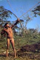Cacador Uaika - Rio Marauia - Alto Rio Negro - Amazonas - Nudo Di Uomo - Sex - Erotico - Formato Grande Viaggiata – E 9 - Cartoline