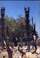 Periple En Afrique Australe - VI - Madagascar - Tombeaux Mahafaly - Sud Madagascar - Formato Grande Viaggiata – E 9 - Madagascar