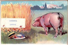 Piglets.~ 1900 - Pigs