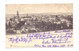 NIEDER-SCHLESIEN - TREBNITZ / TRZEBNICA, Gesamtansicht 1902 - Schlesien