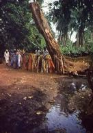 Guinea - Bissau - Africa Occidentale - La Fonte Miracolosa Di Jabikunda - Formato Grande Non Viaggiata – E 9 - Guinea Bissau