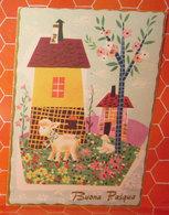 Auguri Buona Pasqua  Cartolina - Pasqua