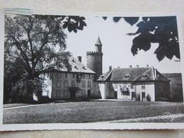 CIREY SUR VEZOUZE - Château De Chatillon - Cirey Sur Vezouze