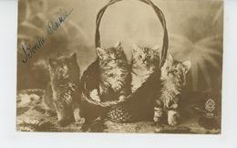 CHATS - CATS - Jolie Carte Fantaisie Chats Et Corbeille - Cats