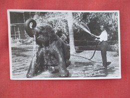 RPPC       Elephant Nellie's Bathtime    Mitchell Park Durban  Uganda Stamp & Cancel Ef. 3078 - Elephants