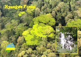 1 AK Ruanda * Der Nyungwe-Wald - Ein Immergrüner Bergregenwald - Das Waldgebiet Ist Seit 2012 Nationalpark * - Ruanda