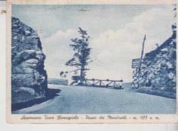 Appennino Tosco Romagnolo Forlì Passo Mandrioli Trattoria Raggio 1953   Vg  F/T - Forlì