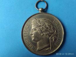 Repubblica Francese Societe Nationale Du Tir Des Communes De France  Medalle D'honneur - Monarchia / Nobiltà