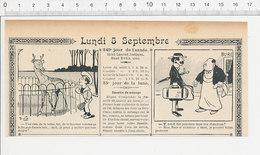 2 Scans Humour De 1904 Insecte Punaises Punaise De Lit ?? / Rhumatismes 223S - Non Classés