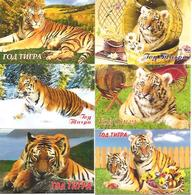 6 Packet Calendars  TIGERS  2010  Russia - Calendars