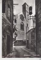 Giovinazzo Bari Cattedrale   Vg  F/T - Bari