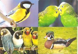 4 Packet Calendars   BIRDS   2013  Lihuania - Calendars