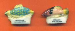 Lot De 2 Feves De La Serie Merci Mon Commandant 1999 - Poissons Exotiques - Animals