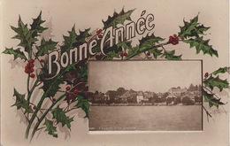 Bonne Année, Coppet, Oblitération  31.12.1920 - VD Vaud