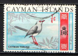 CAYMAN ISLANDS - 1969 - Cayman Thrush - USATO - Cayman Islands