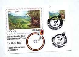 Carte Cachet Tirgul Sur Oiseau - Moldavie
