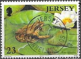 Jersey - Y&T N° 979 - Oblitéré - Jersey