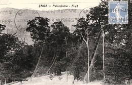 SARE. - Palombière - Filet. Carte Pas Courante - Sare