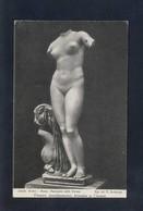 *Venere Anadyomene, Trovata A Cirene* Ed. D. Anderson Nº 23638. Nueva. - Esculturas