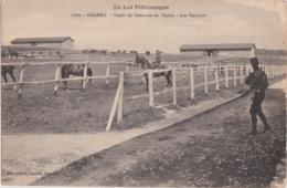 Bs - Cpa GRAMAT (Lot) - Dépôt De Remonte Du Ségala - Les Parcours - Gramat