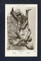 Auguste Rodin *Groupe* Ed. Lapina Nº 6355. Nueva. - Esculturas