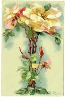 Illustrateur : Klein. Roses. - Klein, Catharina