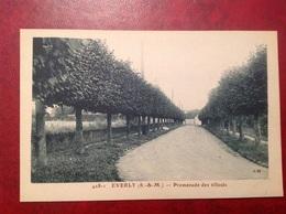 Everly Promenade Des Tilleuls - Francia