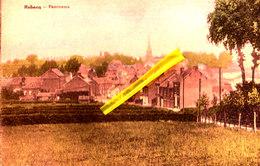 REBECQ - Panorama - Carte Colorée - Rebecq