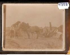 1353 CARTE PHOTO SCENE DE BATTAGE A IDENTIFIER AVANT 1900 TTB - Cartoline