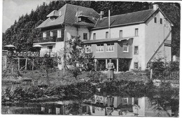 BURG-REULAND (4790) Hotel Du Val De L Our - Les étangs à Truites Derrière Les Batiments De L Hôtel - Burg-Reuland