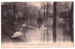 3311 - Paris 5e ( Le Jardin Des Plantes ) - Inondations De Janvier 1910 - I.P.M. N°2 - - Arrondissement: 05