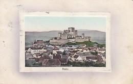 AK Burg Rabí - 1910  (37776) - Tschechische Republik